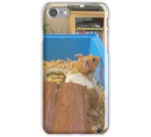Hamster and dog  iPhone Case/Skin
