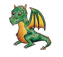 Baby Dragon! Photographic Print
