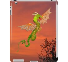It's a Dragon's World iPad/iPhone/iPod/Samsung cases iPad Case/Skin