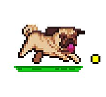 PUG - PIXEL ART Photographic Print