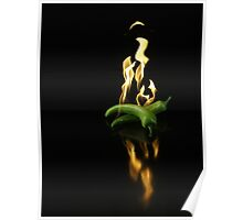Flaming chilli pepper Poster