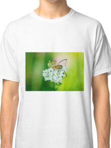 Insect on a white flower macro Classic T-Shirt