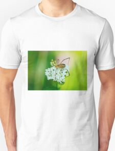 Insect on a white flower macro T-Shirt