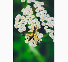 Yellow black bug on a white flower macro Unisex T-Shirt