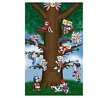 Let's Go Climb A Tree! Photographic Print