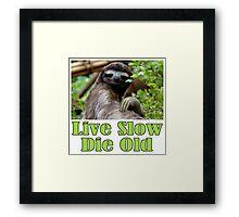 Mr. Sloth Says - Live Slow, Die Old Framed Print