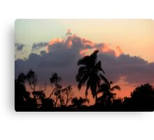 Palms in Sunset Canvas Print