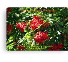 Red Rowan Berries Christmas Card Canvas Print