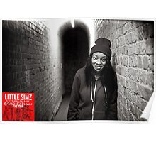 Little Simz - A Curious Tale of Trials + Persons Poster