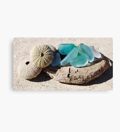10 Sea glass and sea shells collection Canvas Print