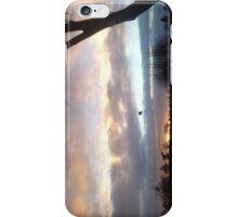 Winter Solstice Sunrise iPhone Case/Skin