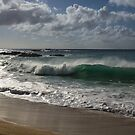 Big Wave at Waimea Bay Beach, North Shore, Oahu, Hawaii by Georgia Mizuleva