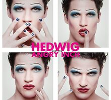 Darren Criss as Hedwig by Sagemerchxo