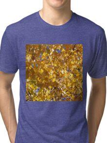 YELLOW LEAVES Tri-blend T-Shirt