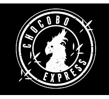 Chocobo Express Photographic Print