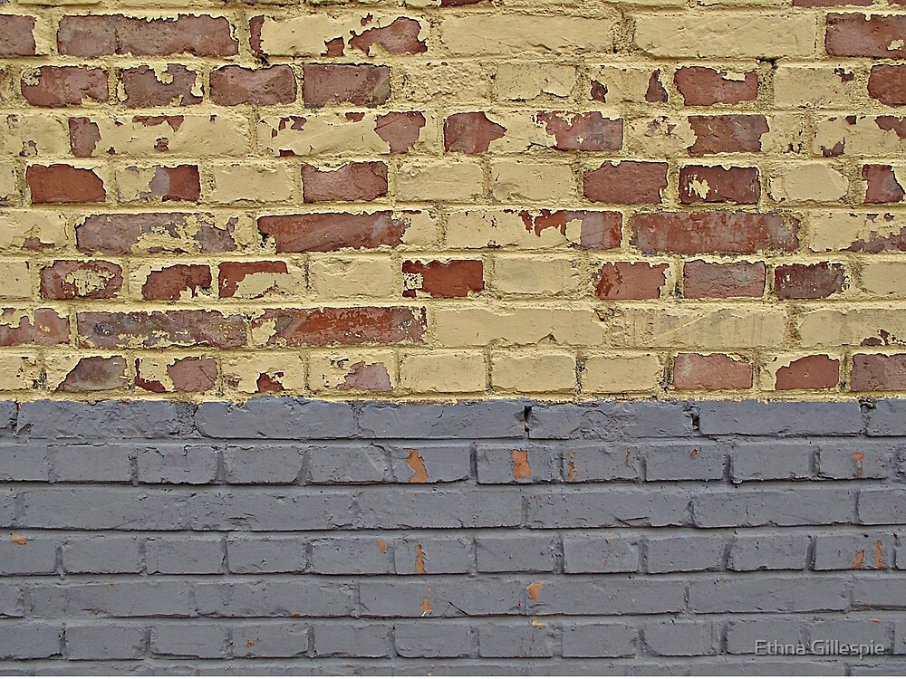 Tri-Colored Brick Wall by Ethna Gillespie
