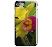 Two-tone Orchid iPhone Case/Skin