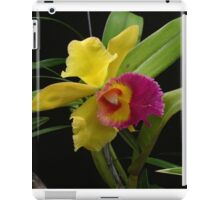 Two-tone Orchid iPad Case/Skin