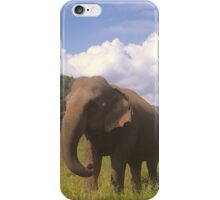 Largest Vegan on Earth iPhone Case/Skin