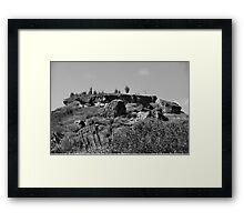 Cacti, Bonaire, 205 Framed Print