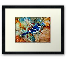 Blue Jay In a Tree Framed Print