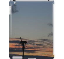 Empty Nest | Cutchogue, New York iPad Case/Skin