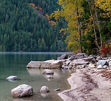 Chilliwack Lake Shoreline by Michael Russell