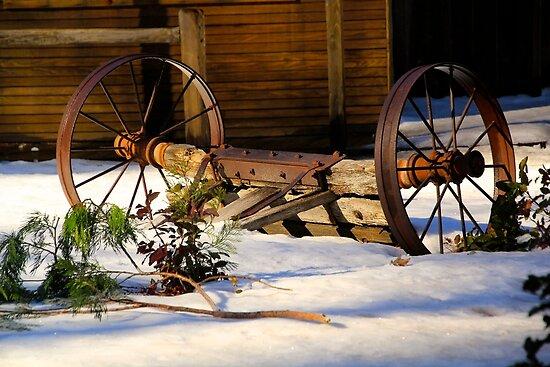Winter Rustic by Barbara  Brown