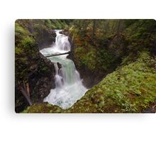 Upper Little Qualicum Falls Canvas Print