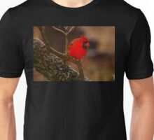 Portrait of a Redbird Unisex T-Shirt