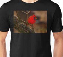 Portrait of a Redbird Unisex T-Shirt