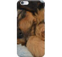 Cute Puppy Sleeping iPhone Case/Skin