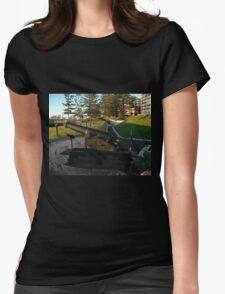 Wollongong Cannons, Australia 2007 Womens Fitted T-Shirt