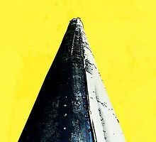 Cone on Yellow  by Ethna Gillespie
