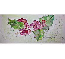 Holly Berries for Seasons Spirit Photographic Print