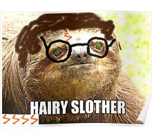 Hairy Slother Poster