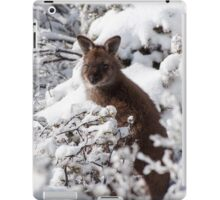 Wallaby in snow iPad Case/Skin