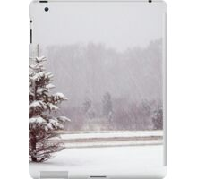 Winter fir tree  iPad Case/Skin
