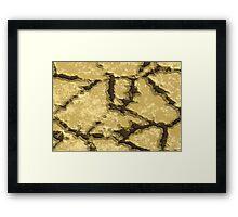 Cracks Framed Print