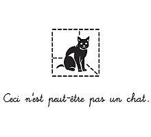Le Chat de Schrödinger (dark) Photographic Print