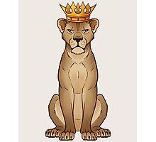 Lioness Queen Photographic Print