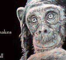 A Jane Goodall quote Sticker