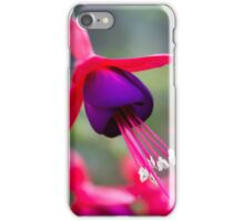 Fushia iPhone Case/Skin
