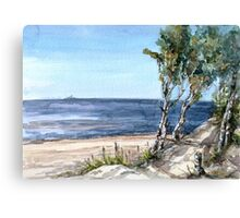 Wild seashore Canvas Print