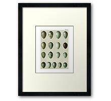 Bird's Eggs Framed Print