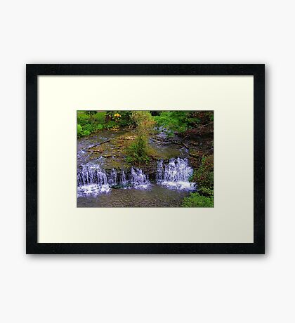 The Zen Garden Framed Print