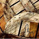 Bushel Basket Lids_Bishops Head by Hope Ledebur