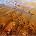 Waves of Sand by Angelika  Vogel