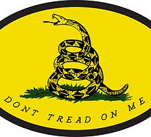 Dont Tread On Me - Gadsden flag by Timothy Denehy