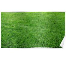 Unique Grass Design Poster